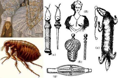 Flea traps