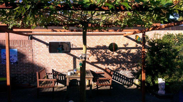 Pin van Berry Akkermans op Our own garden