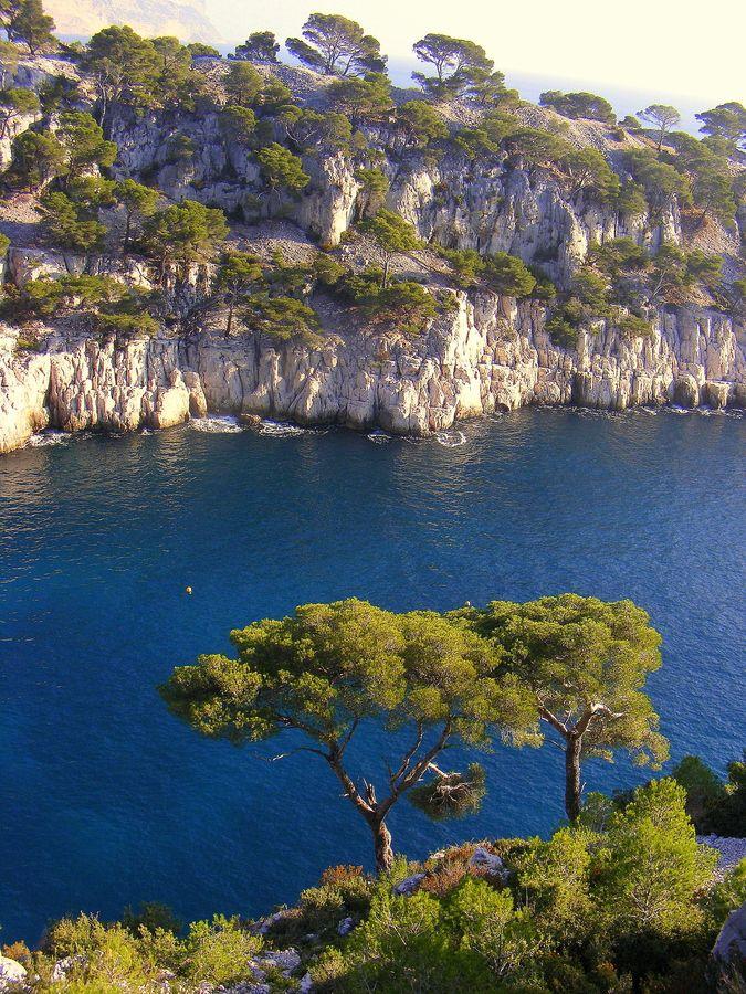 Baignade apaisante dans les calanques de Cassis, Provence-Alpes Côte d'Azur.
