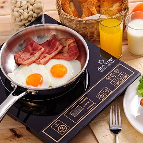 Top 5 Induction Hot Plates - Buyer's Guide and Reviews � September 2017