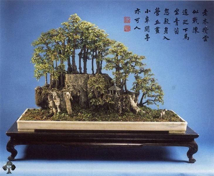 Árvores em estilo chinês: paisagem de Penjing