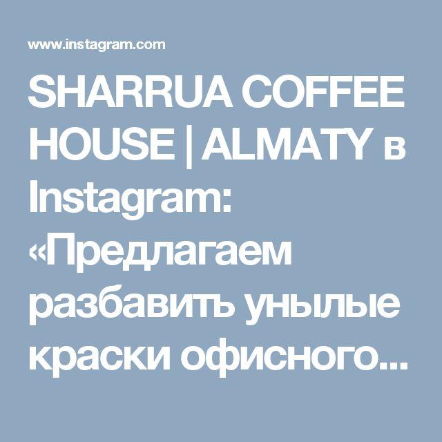 SHARRUA COFFEE HOUSE | ALMATY в Instagram: «Предлагаем разбавить унылые краски офисного дня ярким вкусным обедом в нашей компании. С Вас - присутствие, с нас - хорошее настроение и…»