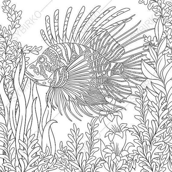 21 best Ocean World images on Pinterest Coloring books Adult