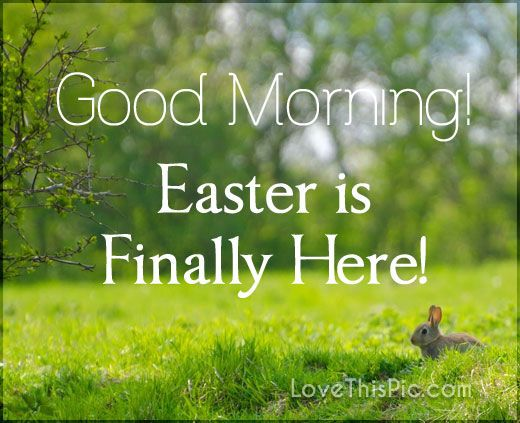 Easter Is Here Good Morning good morning easter quotes easter images easter quote happy easter happy easter. easter pictures religious easter quotes happy easter quotes quotes for easter easter good morning quotes good morning easter quotes