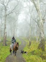 Stockman Barrington Tops NSW -Owin Wilson