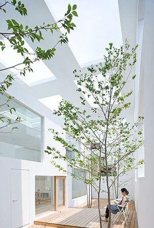 藤本 壮介 house N