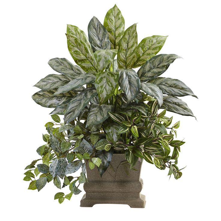 Nearly Natural Mixed Silver Queen, Wandering Jew and Fittonia Silk Plant - 6824