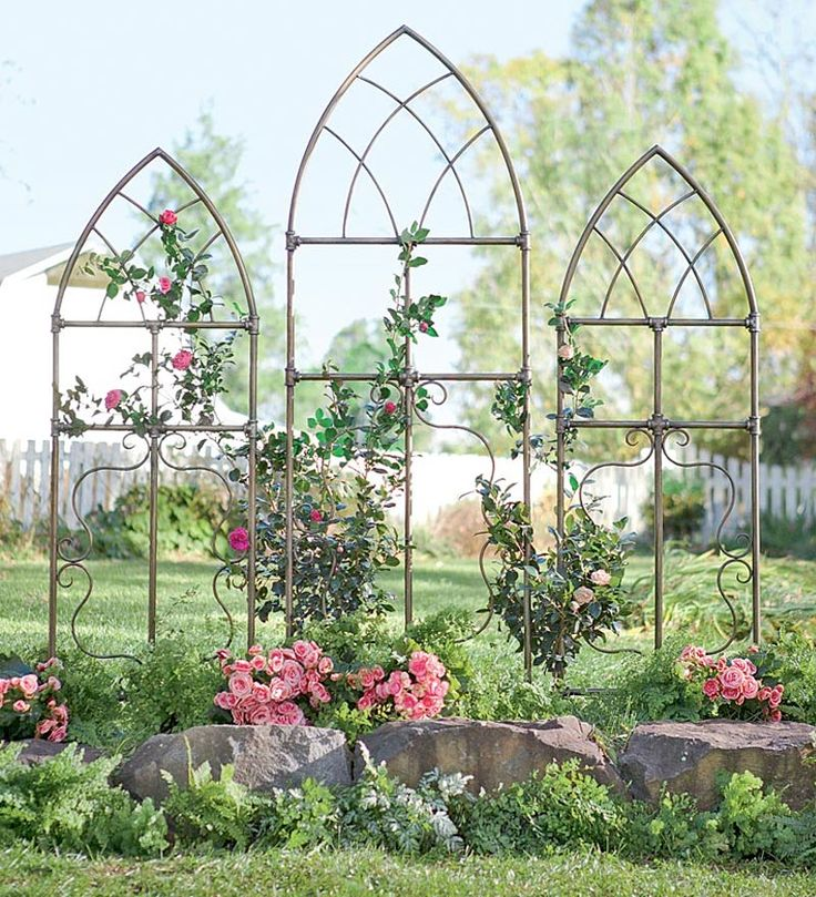 Small Pipe Fitting Cathedral Garden Trellises, Set of 2