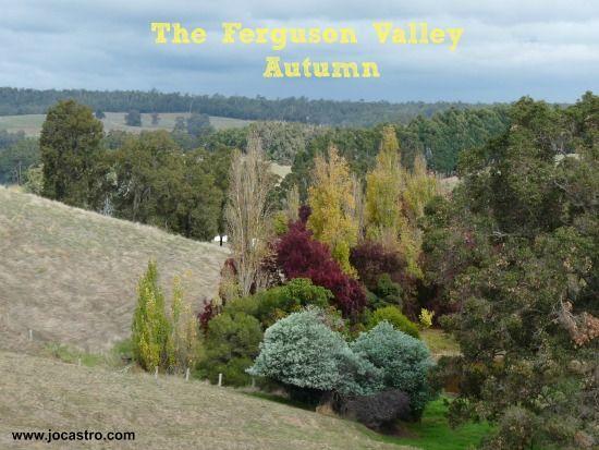 Introducing the Fabulous Ferguson Valley in SWA (to yTravelBlog) - www.zigazag.com
