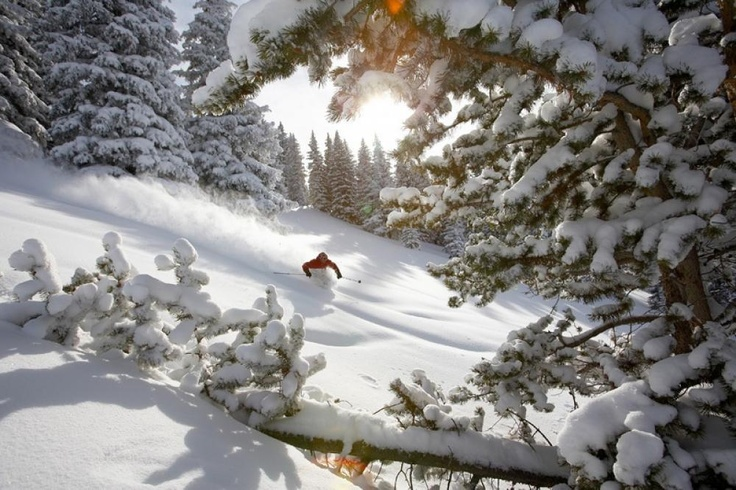: Affleck Sportskifr, Ski Vacations, Ski Free, Winter Wonderland, Sports Ski, Colorado Mountain, Jack O'Connel, Vail Ski, Jack Affleck