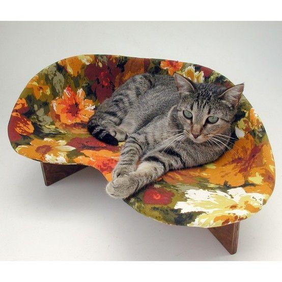 Cat bed - to buy