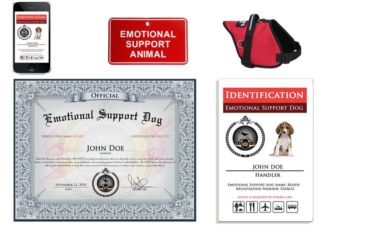 Register your dog as an Emotional Support Dog and the dog is protected against Fair Housing Act