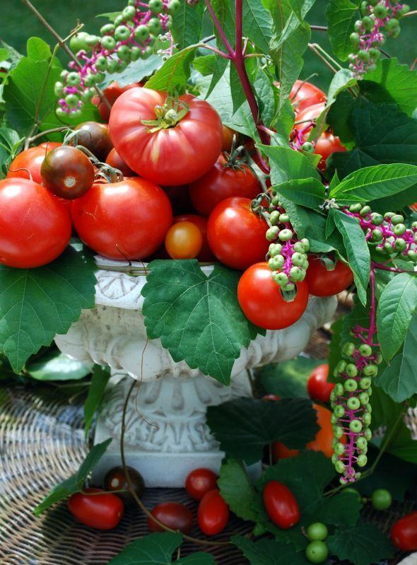 Centerpiece. Garden party perfection!
