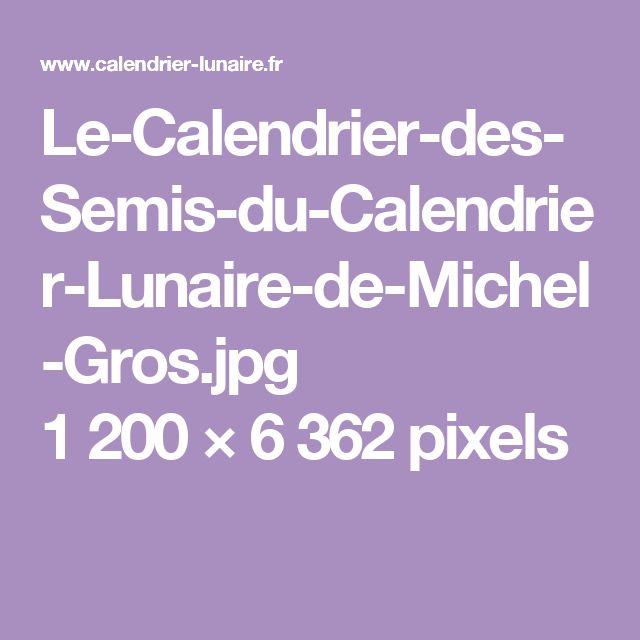 Le-Calendrier-des-Semis-du-Calendrier-Lunaire-de-Michel-Gros.jpg 1200×6362 pixels