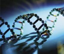 Η φύση φρόντιζε ανέκαθεν να εφαρμόζει κυκλικές διεργασίες ώστε να είναι βιώσιμη & αέναη. Η ανθρώπινη δραστηριότητα με την Βιοτεχνολογία μετέτρεψε τον κύκλο ζωής.