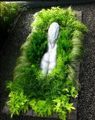 Old garden statue reclaimed.Creating the illusion that a lady is swimming through a sea of plants. Plants splashing over the edge creates the illusion of movement
