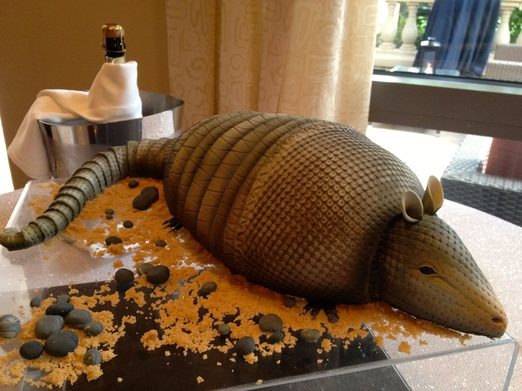 What a groom wants, a groom gets, even if it's an armadillo cake for his wedding!