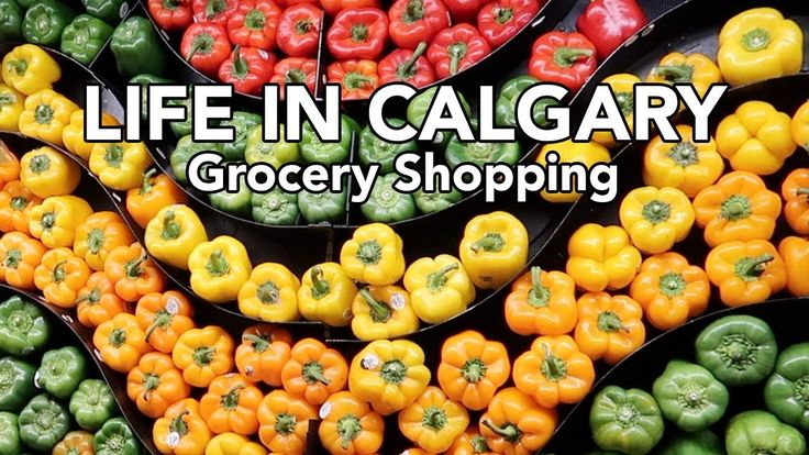LIFE IN CALGARY: Grocery Shopping