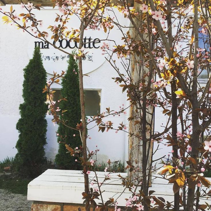 """""""Keep love in your heart. A life without it is like a sunless garden when the flowers are dead. ~~Oscar Wilde"""" Bistro Ma Cocotte. Brasov. Garden. Relaxation. Coffee. Bistro. Events. Live. Music. Happy moments."""