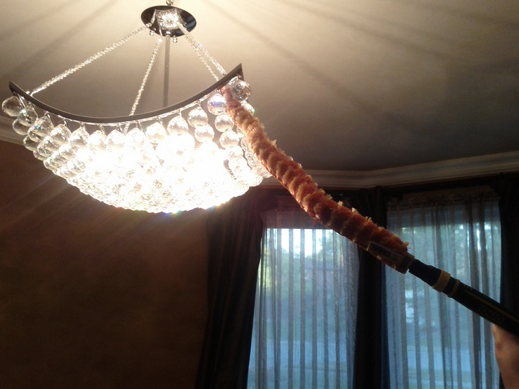 Flexi in action in my home!   Contact me today cschlecht@enjo-canada.com