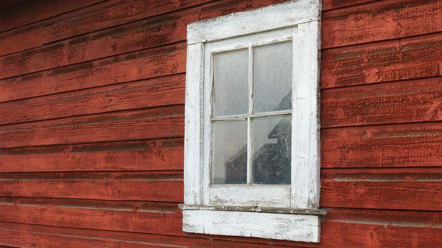 Alte Fenster, die von der Witterung gezeichnet sind, sehen unschön aus und sind schimmelgefährdet. Wenn Sie Ihre Holzfenster streichen, können Sie Schlimmeres verhindern. Tipps, wie Sie Fensterrahmen am besten renovieren, gibt's hier, im SAT.1 Ratgeber.