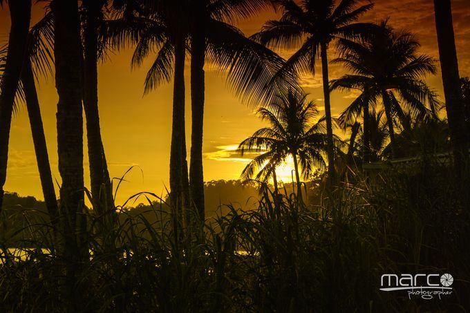 "Photo ""IMG_8167"" by mahecar"