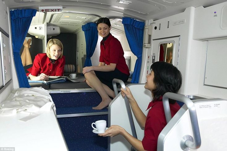 Have you ever wondered where flight attendants sleep during a (long) flight?