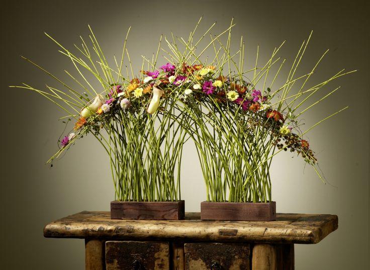 FDF - Fachverband Deutscher Floristen e.V. Bundesverband: Herzogin des Herbstes : die Chrysantheme