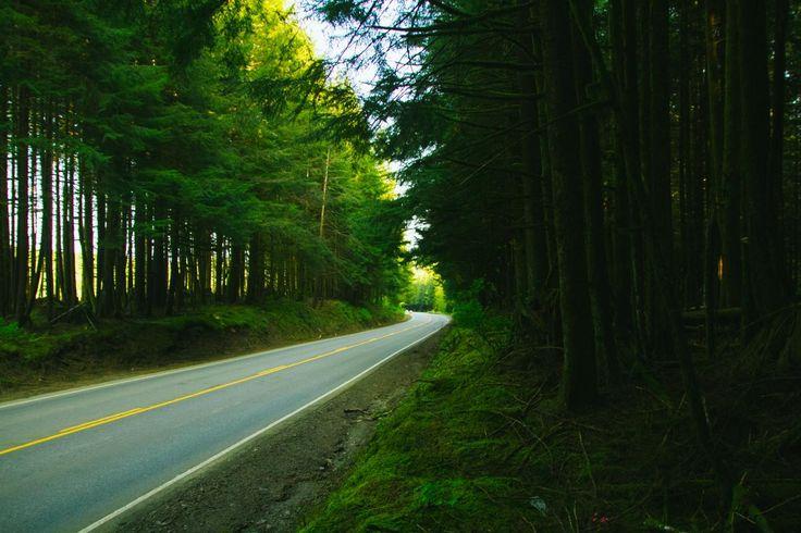 👌 rural road pavement  - download photo at Avopix.com for free    ✔ https://avopix.com/photo/18909-rural-road-pavement    #rural #road #way #landscape #pavement #avopix #free #photos #public #domain