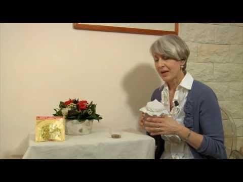 Come fare i semi e germogli alfa alfa in casa? Simona Vignali,naturopata e nutrizionista lo spiega - YouTube