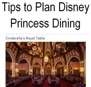 Are you taking your family to Walt Disney World? Here are some tips to planing Princess Dining with your children.