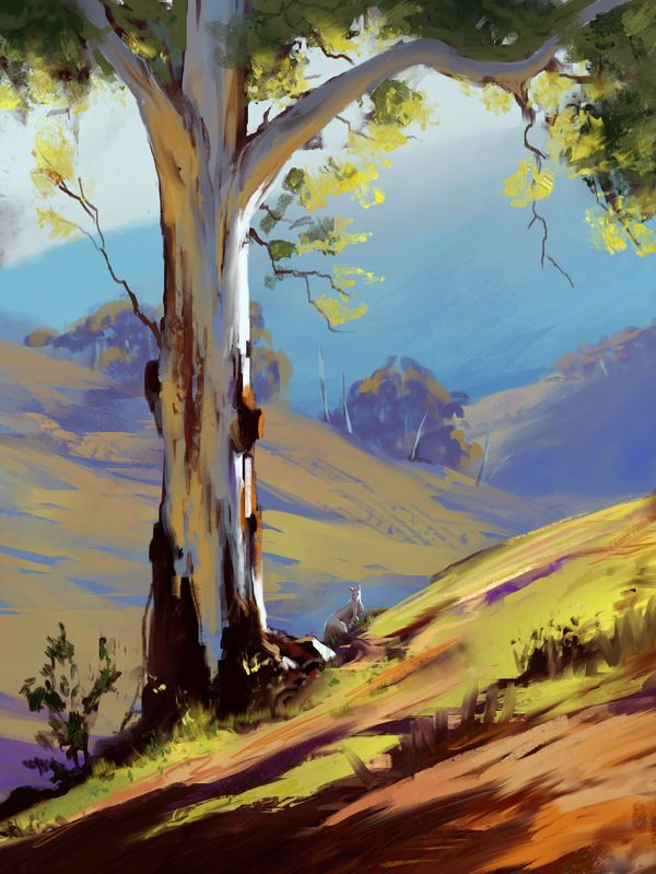 Tree Study By Mikejordana On Deviantart With Images Landscape