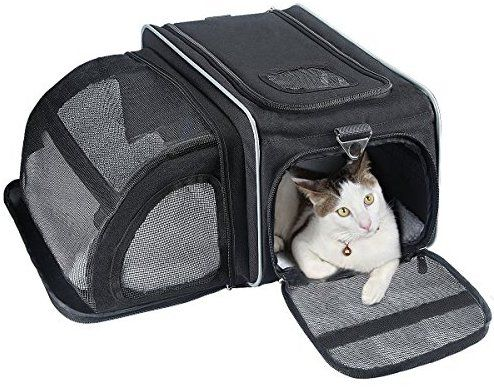 Amazon Com Cat Carrier Fypo Soft Sided Airline Approved Pet Carriers Expandable Travel Foldable Cozy B Airline Approved Pet Carrier Cat Carrier Pet Carriers