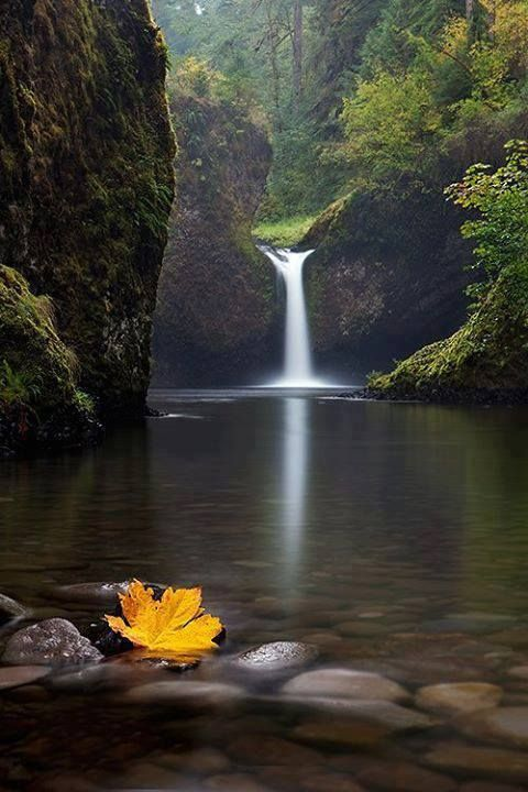 1317 Best Images About Beautiful Places And Happenings On Pinterest Lakes Oregon And