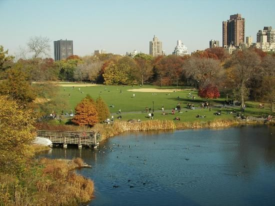 Book your tickets online for Central Park, New York City: See 106,226 reviews, articles, and 49,843 photos of Central Park, ranked No.1 on TripAdvisor among 1,122 attractions in New York City.