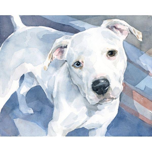 White Pitbull American Bulldog pet portrait art print 11x14
