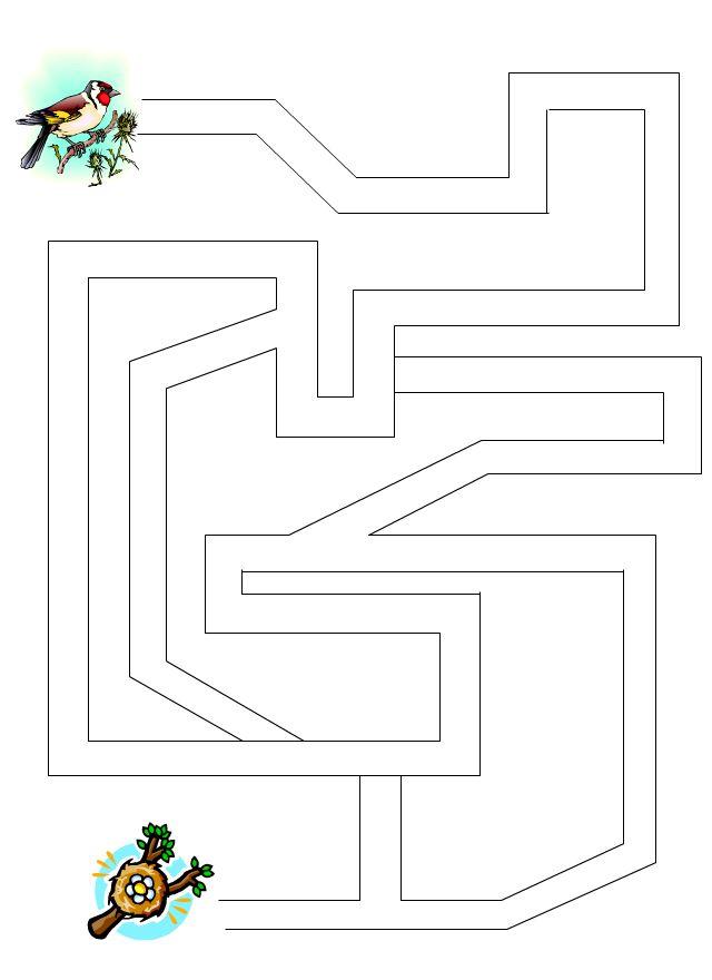Labyrinthe 12