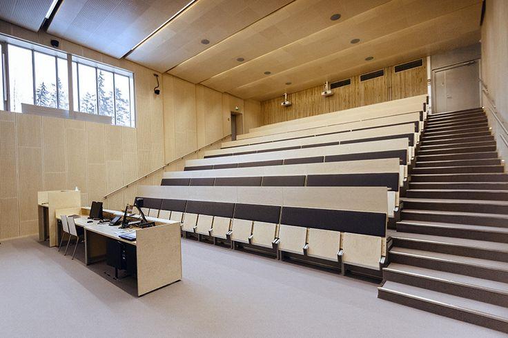 Auditorium at our main campus: G00-10, Kuntokatu 3.  Photo: © Ville Salminen
