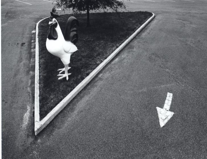 Big Rooster, Wilson, N.C., 1970