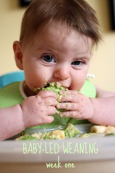 Adventures in baby-led weaning