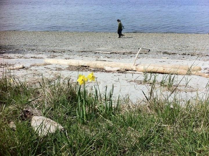 Cortes Island,BC