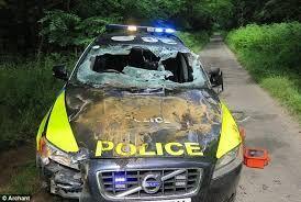 Image result for vehicle stuck on bollard