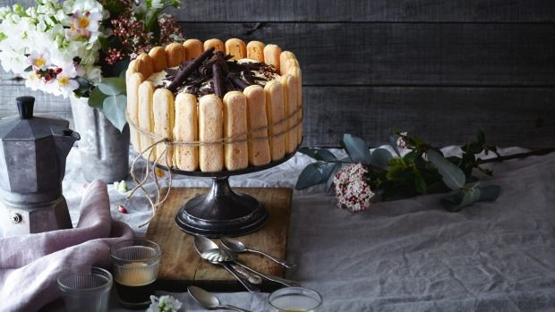 This tiramisu cake is encircled by a ring of sponge fingers tied with a bow.