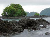 En las áreas protegidas aún se mantienen algunos de los ecosistemas representativos del Chocó Biogeográfico.