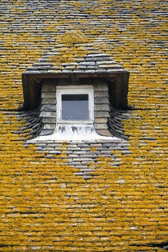Roof, Saint-Malo | France by storvandre