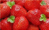 zazimovať jahody