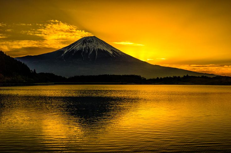 Photograph Golden color by Akio Iwanaga on 500px
