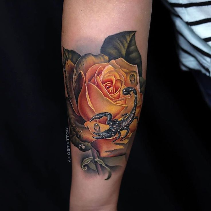 Better photo of this #yellow #rose and #scorpion I did ...