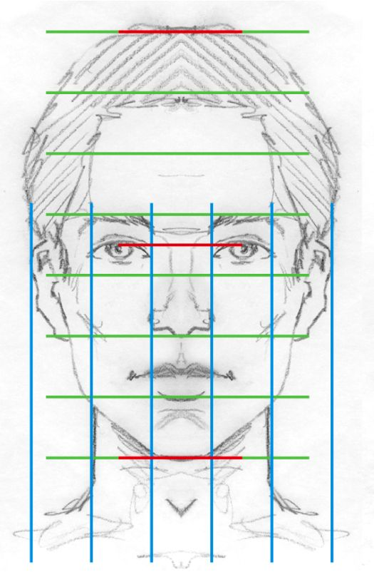 Realistic facial proportions ( VERY DIFFERENT TO ANIME PROPORTIONS)