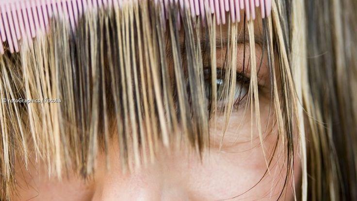 Fettige Haare sind eine Veranlagung, die das eigentlich gepflegte Haar schnell ungepflegt aussehen lässt. Die Ursache ist eine erhöhte Talgproduktion der an ...